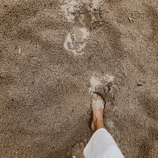 Sust_webb_beach_footprint_1080x1350.jpg